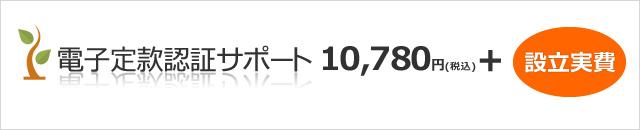 電子定款認証サポート  9,800円(税別)+